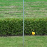BSN Outdoor Tetherball Set